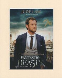 Jude-Law-Fantastic-Beasts-Original-Signed-10x8-034-Mounted-Autograph-Photo-COA