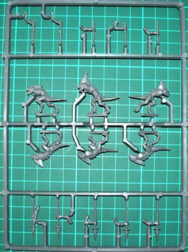 dont 6 x 25 mm base ronde Seraphon scinques bits//pièces-scinques X 6