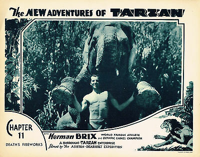 NEW ADVENTURES OF TARZAN 1935 BRUCE BENNETT MOVIE PHOTO NEW! BURROUGHS BEEFCAKE