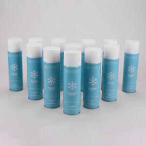 Scheibenenteiser-Spraydose-Entfrosterspray-Enteiserspray-Frostschutz-12x-500ml