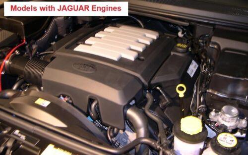 LouiseEvel215 Mini carburatore a Motore a Due Tempi con Filtro Aria per 49cc 50cc 60cc 66cc 80cc