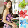 8 colors a set Orchid Flower Hair Clip Barrette Brooch Girls Hair Accessories