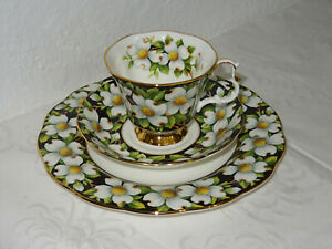 Kaffeegedeck-Royal-Albert-dogwood-provincial-Flowers
