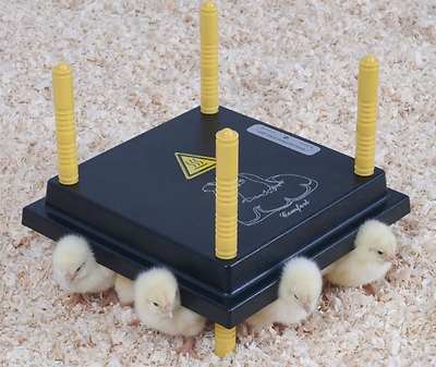 Pet Supplies Helpful 30cm Chick Brooder/heat Plate With 0.5l Drinker & 30cm Feeder For Upto 25 Chicks Aesthetic Appearance