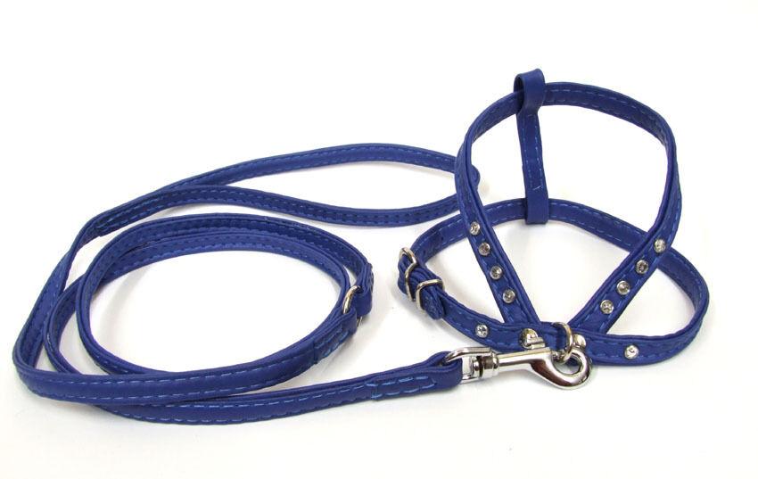 LUXUS Leder SET aus Ziegenleder mit mit mit Strass BLAU       Feinen Qualität  0c2980