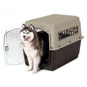pets supplies