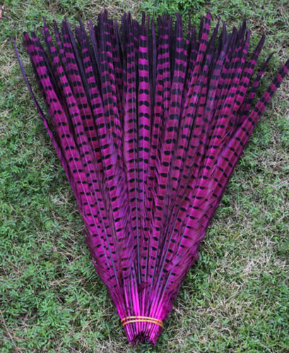Wholesale 10-100 Pcs 25-60 cm 10-24 inch natural pheasant tail feathers Hot