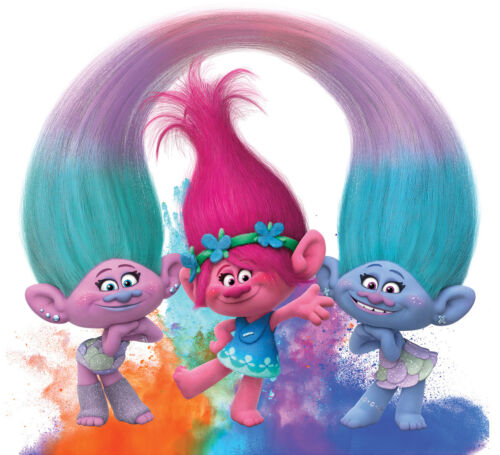 Trolls iron on T shirt transfer Choose image and size
