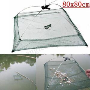 Fishing-Net-Fish-Shrimp-Minnow-Crab-Baits-Cast-Net-Mesh-Trap-Dip-Cage-80x80cm