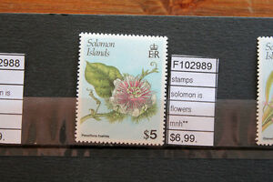 STAMPS-SOLOMON-ISLANDS-FLOWERS-MNH-F102989