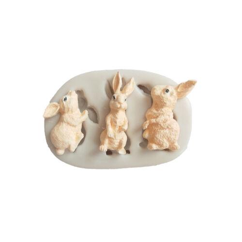 Rabbit silicone fondant mold bunny chocolate gumpaste mold cake decors tool UK