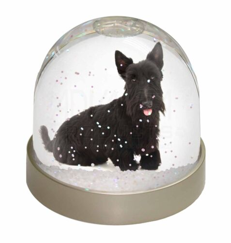 Scottish Terrier Photo Snow Globe Waterball Stocking Filler Gift AD-ST2GL