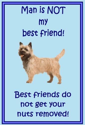 Dog fridge magnets New Gift Free UK p//p Cairn Terrier New