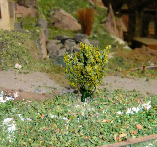 ein Traum 8  gelbblühende Blütensträucher