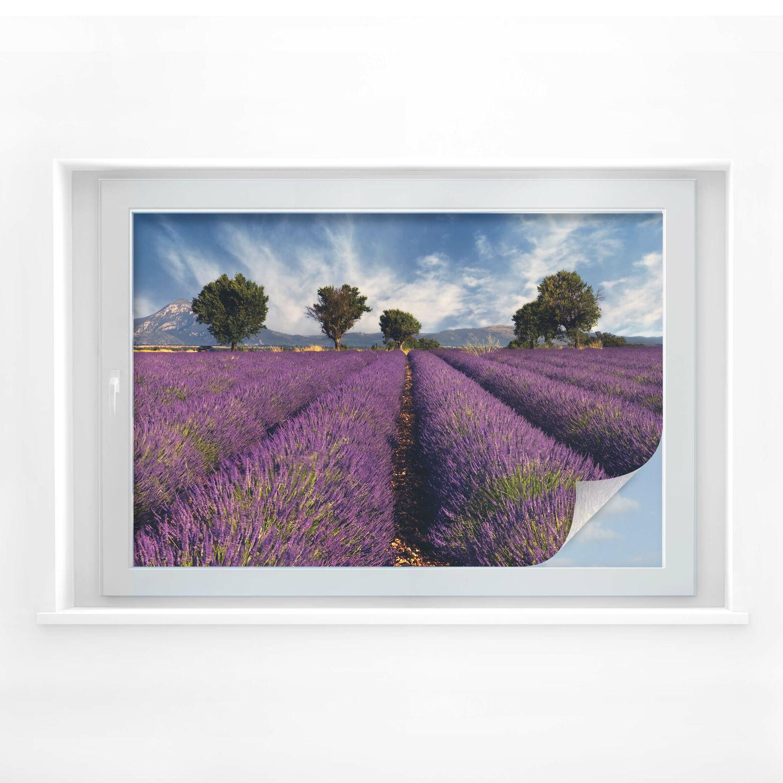 Sichtschutzfolie Lavendelfeld | Hervorragende Eigenschaften  Eigenschaften  Eigenschaften  c7126b
