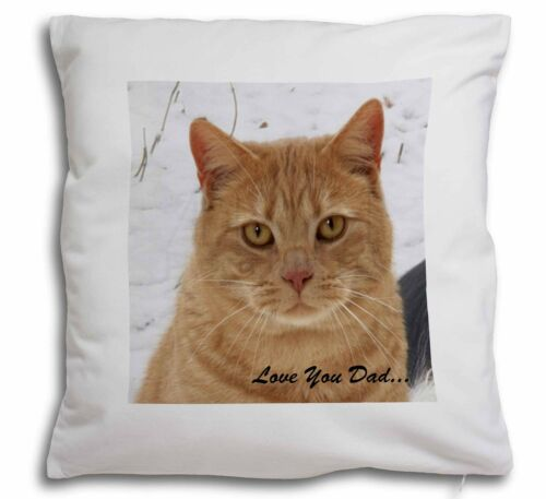 Ginger Cat /'Love You Dad/' Soft Velvet Feel Cushion Cover With Inner DAD-157-CPW