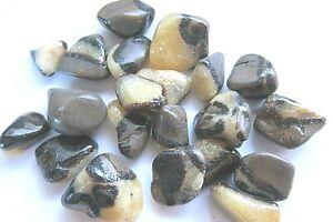 ONE-Septarian-Dragon-Tumbled-Stone-25-30mm-Healing-Crystal-Drumming-Circles