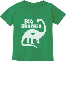Big Brother in Dinosaur Trex Big Brother Gift Toddler//Infant Kids T-Shirt