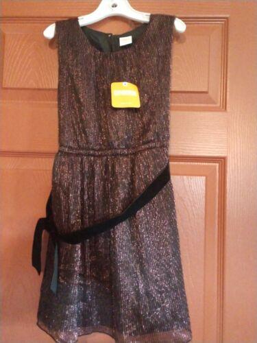 Gymboree Girls winter star sparkle Dress size 5  NWT