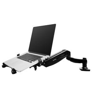 2in1 Monitor Laptop Mount Desk Desktop LCD Arm Tablet Holder Stand