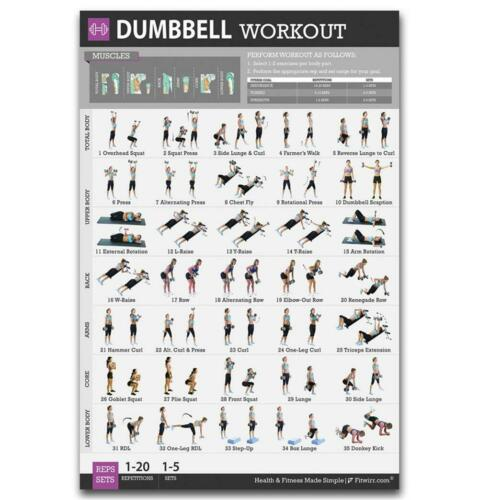 Gym Chart Poster Barbell Dumbbell Workout Stretching Muscle Exercises Body 6PC