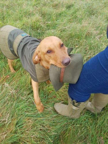 Alan Paine Tweed Dog Coat Green Shower Proof Country Hunting Shooting