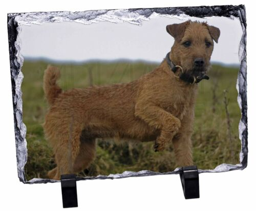 Lakeland Terrier Dog Photo Slate Christmas Gift Ornament, ADLT1SL