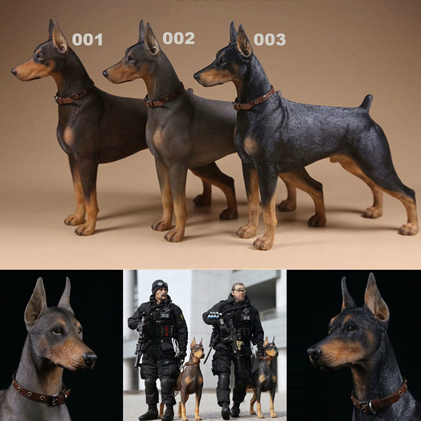 1 6 Scale Mr.Z Animal Toys Doberman Resin Figure 3 Coloree Model Decoration Gift