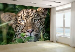 Leopard-Starring-at-the-Camera-Wallpaper-Mural-Photo-76263173-budget-paper