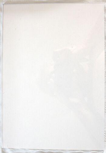 SPA43 Rasberry Spellbinders Grand Calibur Thick Die Adapter Plate D
