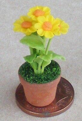 Escala 1:12 Cactus Amarillo en una olla tumdee Casa De Muñecas Accesorio de jardín de flores 10Y