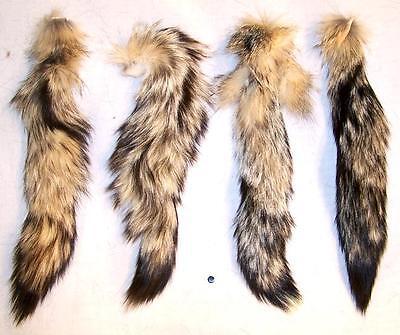 REAL KIT FOX TAIL animal tails foxes fur pelt new natural furs bushy tassel hide