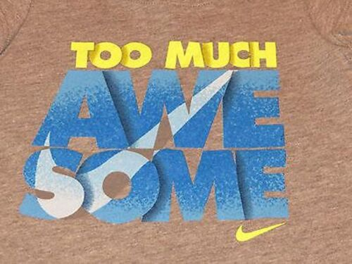 """NWT GREY//MULTI 24M 12M NIKE Infant /""""TOO MUCH AWESOME/"""" Graphic Tee T-Shirt"""