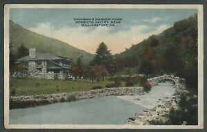 Williamsport-PA-c-1910-Postcard-COCHRAN-039-S-SUMMER-HOME-MOSQUITO-VALLEY