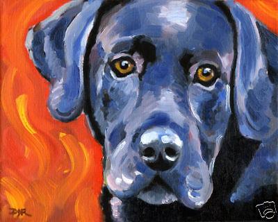 BLACK LAB Oil Painting ART PRINT 11 X 14 Signed by Artist DJR