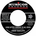 Jimmy Radcliffe - Long After Tonight Is All Over