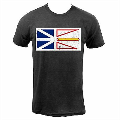 Newfoundland and Labrador Provincial Flag - Tri Black American Apparel T-Shirt