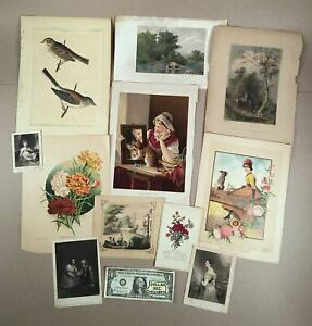 Lot-of-Ten-19th-Century-LITHOGRAPHS-ENGRAVINGS-Some-Hand-Colored-Birds-amp-More