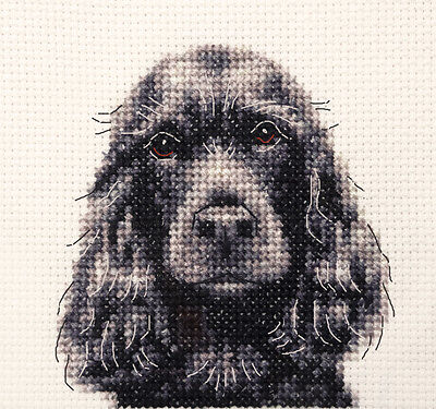 BLACK COCKER SPANIEL dog ~ Full counted cross stitch kit, all materials
