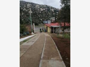 Finca/Rancho en Venta en Valle de las Palmas