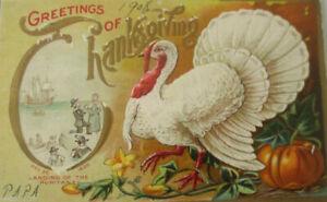 034-Thanksgiving-Greetings-Truhthahn-Kurbis-034-1908-Embossed-Postcard