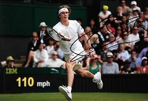 alexander zverev in action making a return at wimbledon signed 12x8 photo PROOF