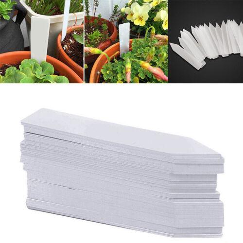 100x Stecketiketten 10x2 Cm Weiß Pflanzetiketten Pflanzschilder Etikett Neu