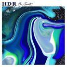 The Tourist 4012957313016 by Housse De Racket Vinyl Album