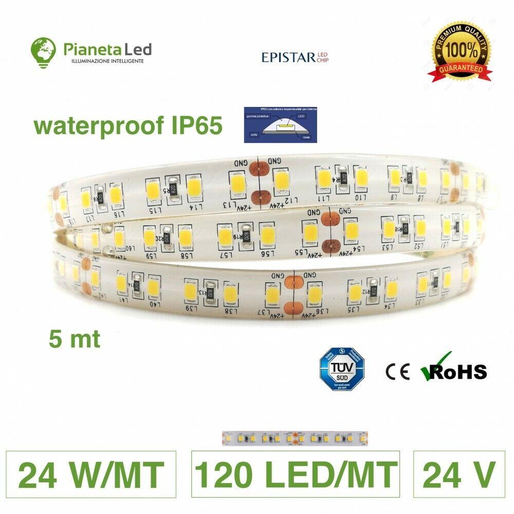 5 METRI STRISCIA 600 LED 2835 SMD 24 W M WATERPROOF IP65 24 V DC PREMIUM SERIES