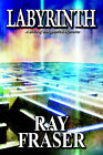 Labyrinth: A Maze of Metaphysical Mysteries by Ray Fraser (Paperback / softback, 2002)