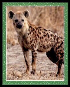 Buy 4 Get 10 Free Topps National Geographic Animals Single Stickers 2019