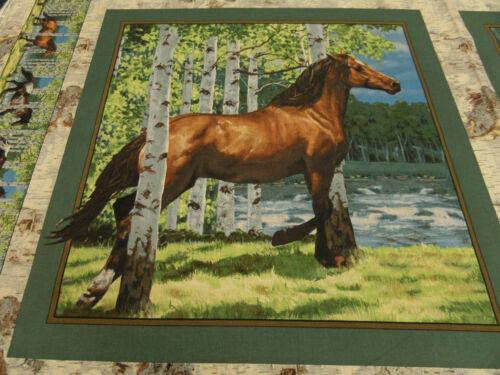 Patchworkstoff  Panel Pferde  45 x 55 cm  BW mehrf.
