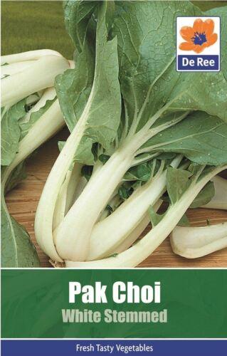 graines potagères Pak Choi blanc tige chou chinois