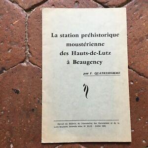 La Stazione Preistorico Moustérienne Delle Hauts-De-Lutz A Beaugency Quatrehomme